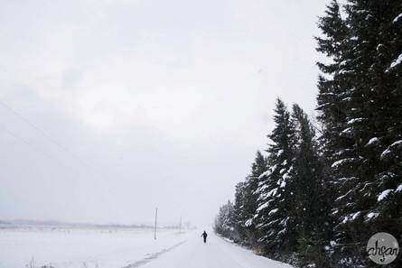 Up North Snowstorm Series, study IX
