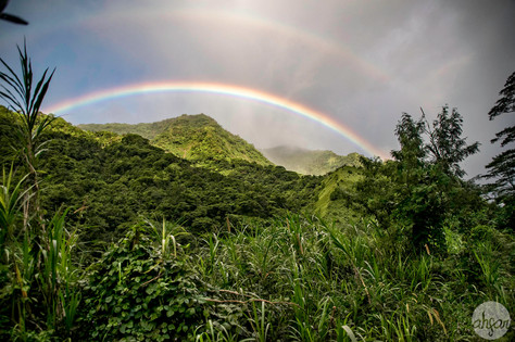 Double rainbow over the Papenoo Valley rainforest of Tahiti Nui, French Polynesia.  Fun fact: I took this photo while hanging out the back of a moving truck, while riding over the bumpiest back roads of the rainforest, as my husband held on to me so I didn't fall. Was it worth it? Absolutely.  Price List #1