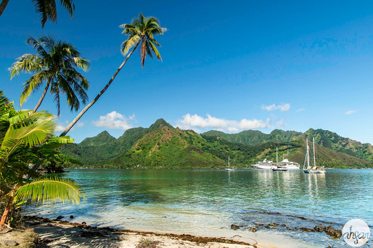 Mo'orea Beach in French Polynesia.  Price List #1