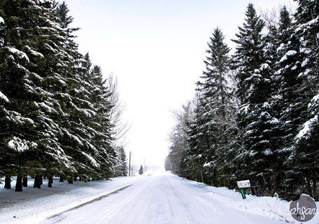 Up North Snowstorm Series, study IV