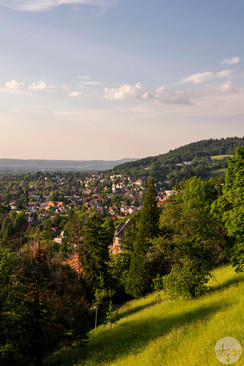 Black Forest Golden Hour
