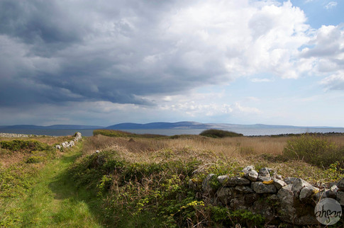 Path to Galway Bay