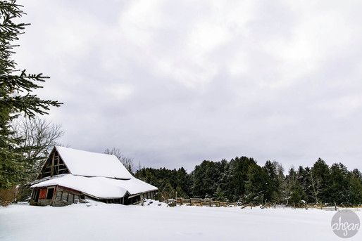 Up North Snowstorm Series, study III