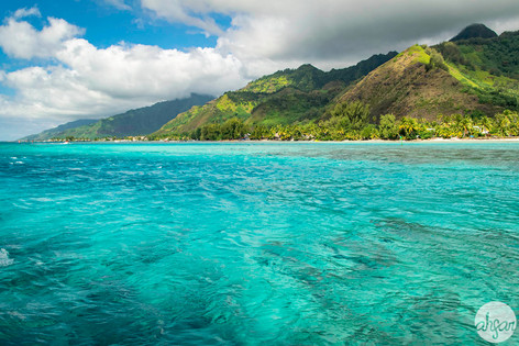 Bright turquoise waters of Mo'orea, French Polynesia.  Price List #1