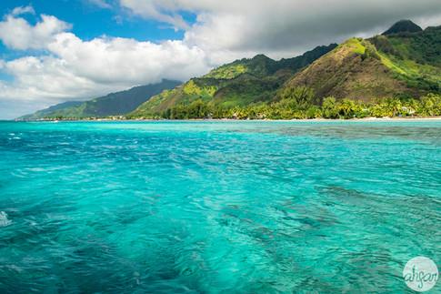 Mo'orea Lagoon, study IV