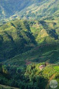 Tonkinese Alps