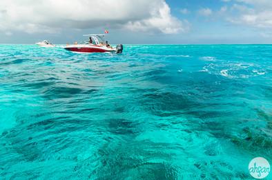 Bora Bora Lagoon, study I