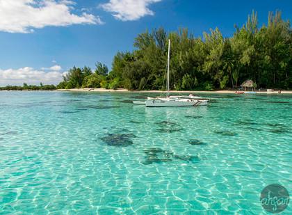 Mo'orea Lagoon, study I