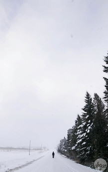 Up North Snowstorm Series, study V
