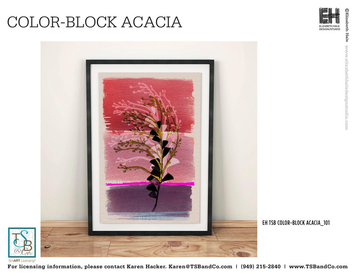 EH TSB _Colorblock Acacia-101.jpg