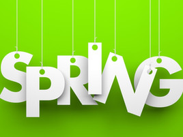 Spring Clean Your Customer Service in 4 Easy Steps