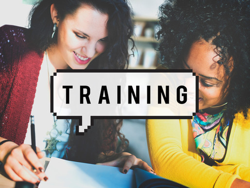 The Basics Part 4:  Great Training