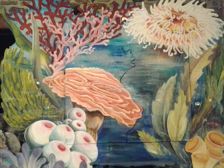 Coralli con Anemoni