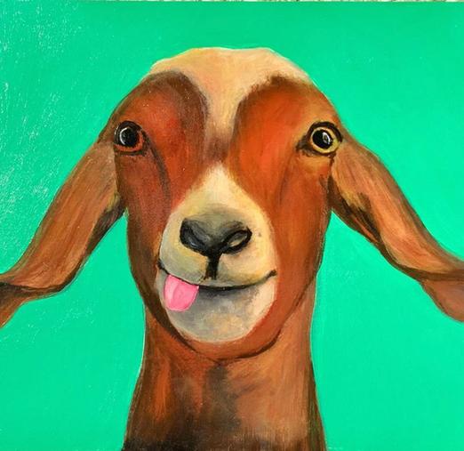 Goata, 8x10