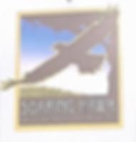 Screen Shot 2020-04-29 at 8.51.57 AM.png