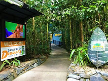 daintree-discovery-centre.jpg