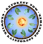 ReForest Now Logo.png