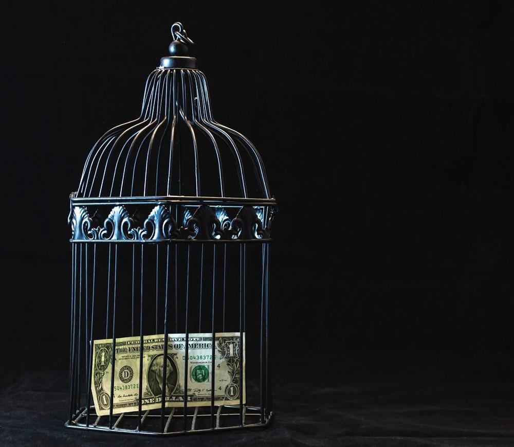dollar bill in a cage