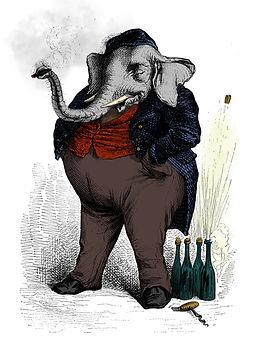Baxter Elephant.jpg