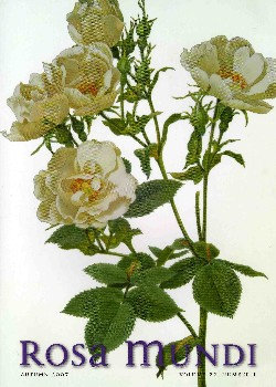 Rosa Mundi #7, Vol. 22, No. 1, Autumn 2007
