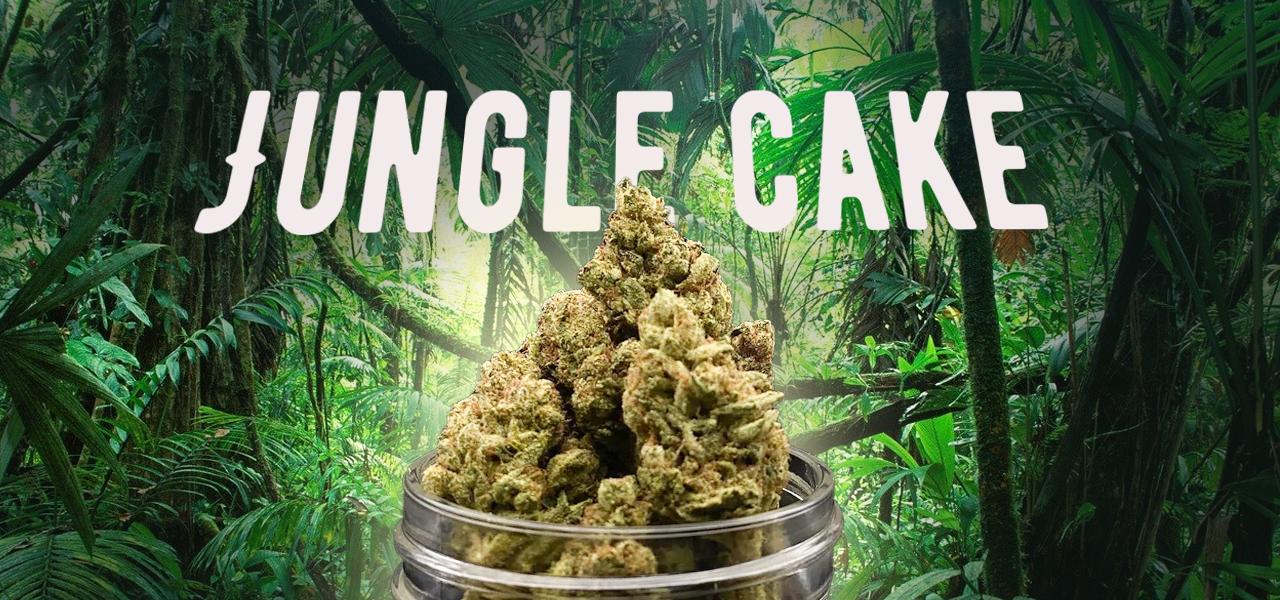 junglecake.png