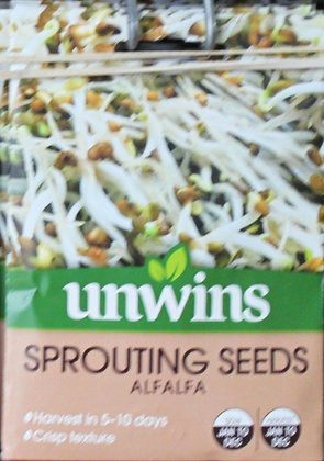 Sprouting Seeds | Alfalfa