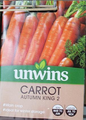 Carrot | Autumn King 2