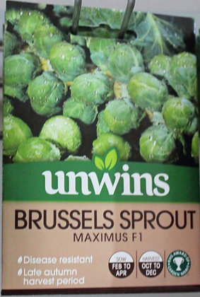 Brussels Sprout | Maximus F1