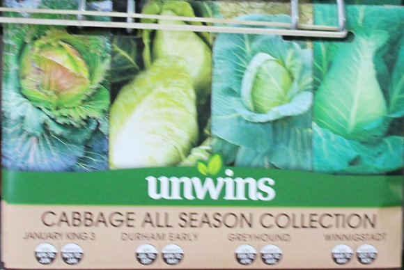 Cabbage All Season Collection