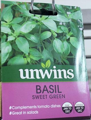 Basil | Sweet Green