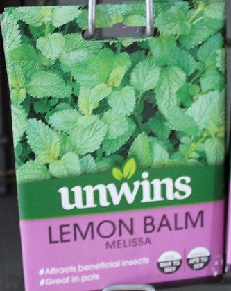 Lemon Balm | Melissa