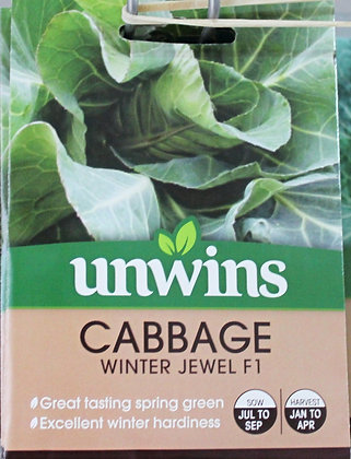 Cabbage | Winter Jewel F1