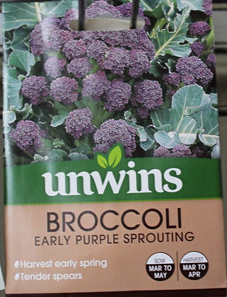 Broccoli | Early Purple Sprouting