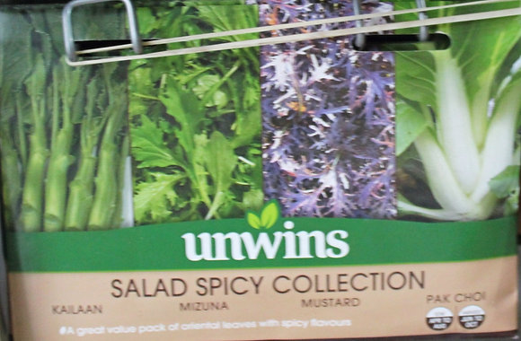 Salad Spicy Collection