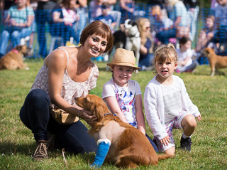 Family Fun Dog Show -3rd September 2017