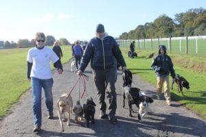 Family Pack Walk 2012
