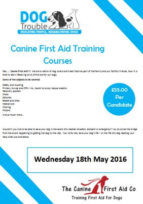 Canine First Aid Training Workshop – May 18th