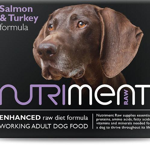 Salmon & Turkey Formula