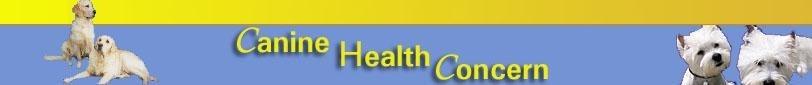 canine health concern banner