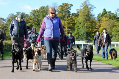 Pack Walk -9th March