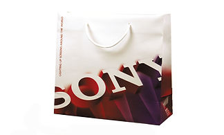 Sony corporate bag