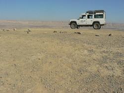 secretgardenstours negev desert