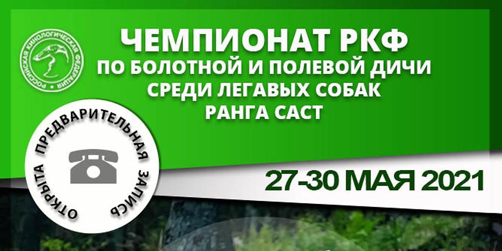 Чемпионат РКФ  по болотной и  полевой  дичи среди легавых собак, САСТ. (1)
