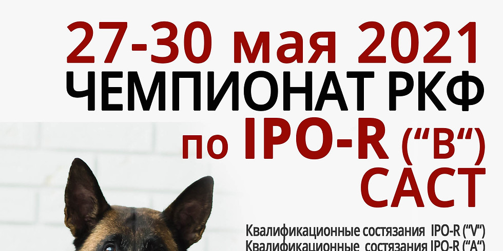 Чемпионат РКФ по  IPO – R («В»), САСТ