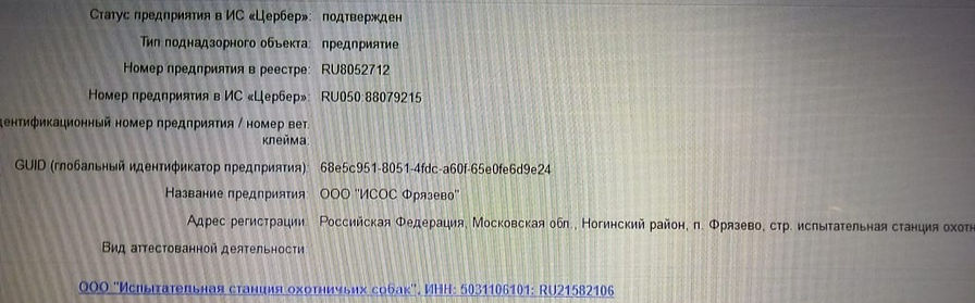 IMG-20200717-WA0007_edited.jpg