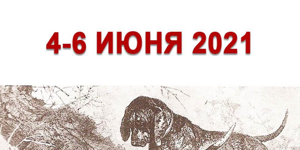 Чемпионат России по кровяному следу среди собак охотничьих пород.