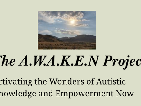 The AWAKEN PROJECT Transformation Retreats for Families Touched by Autism