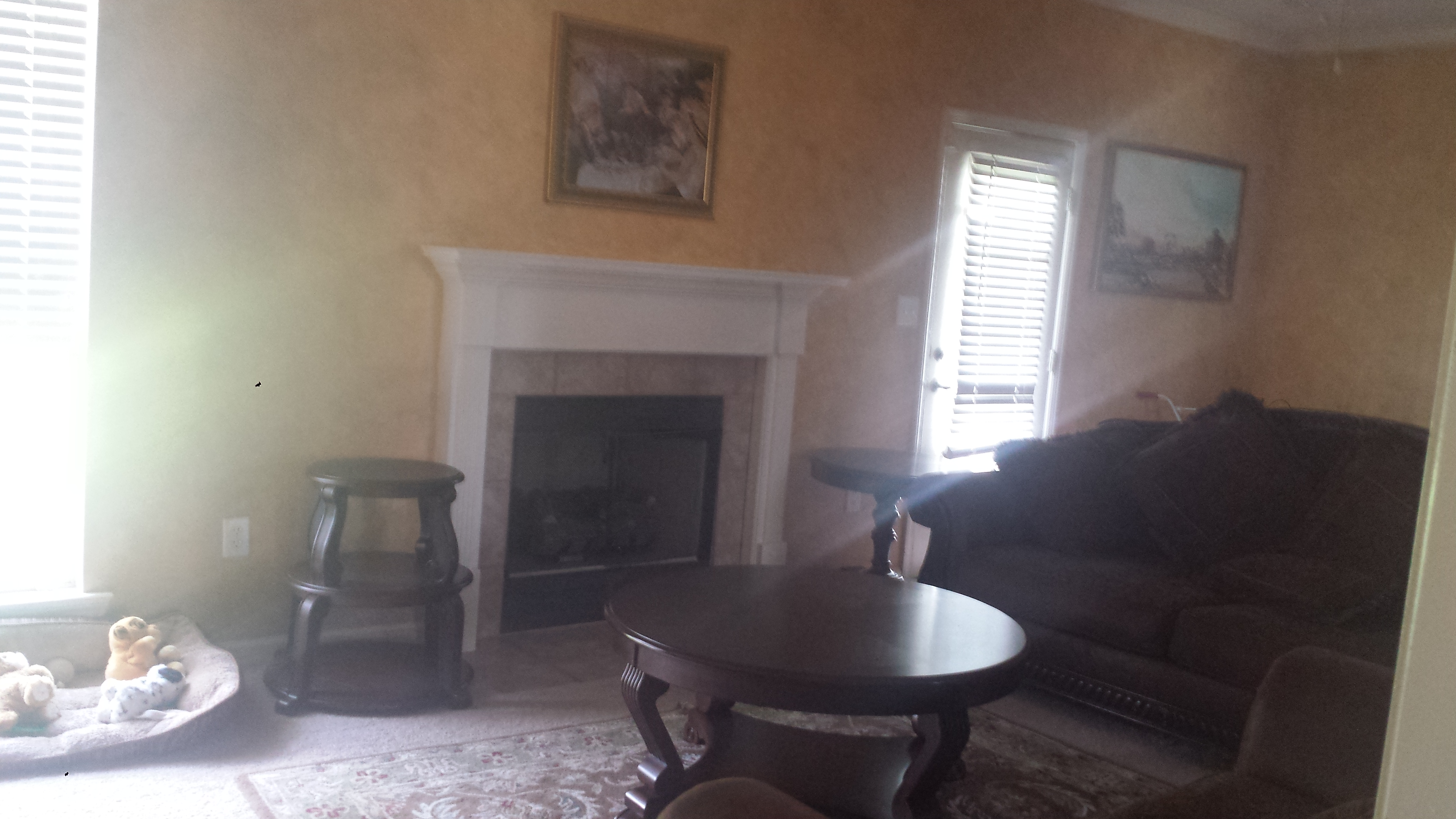 Trey_livingroom2