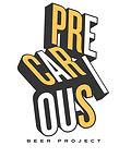 Precarious Project