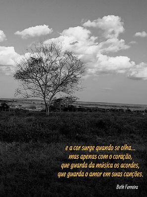 Raio-X - Beth Ferreira.jpg